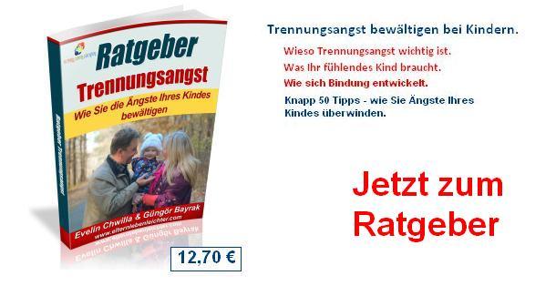 ratg_copy-232x300 kaufen ratgeber Banner
