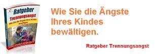 ratg_copy-232x300 Mini Banner Ratgeber